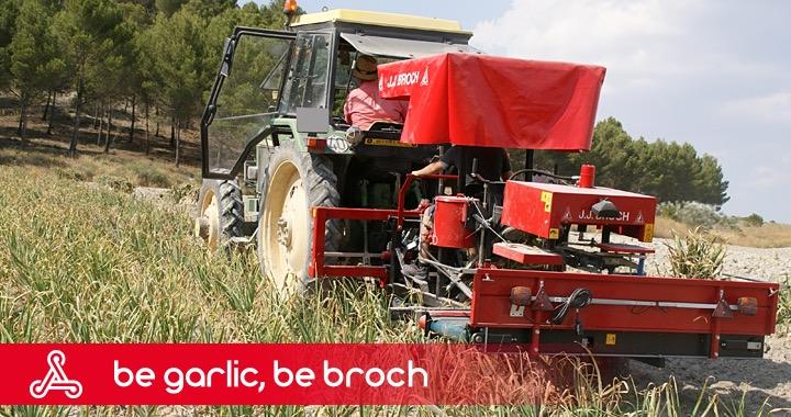 Jjbroch Supply Garlic Technology